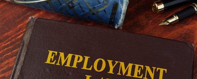 Employment Law 101 Training
